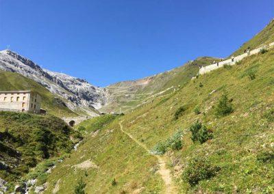 Piano-di-gestione-Parco-Nazionale-dello-Stelvio-Montana-01