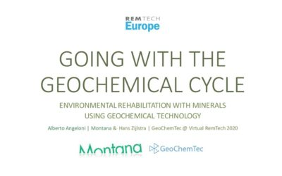RemTech 2020: Going with the geochemical cycle